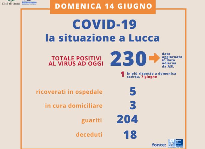 LUCCA – Aggiornamento Coronavirus – I dati della settimana