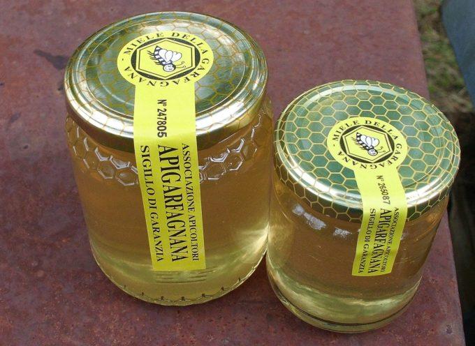 In Garfagnana è pronto il miele di ACACIA !