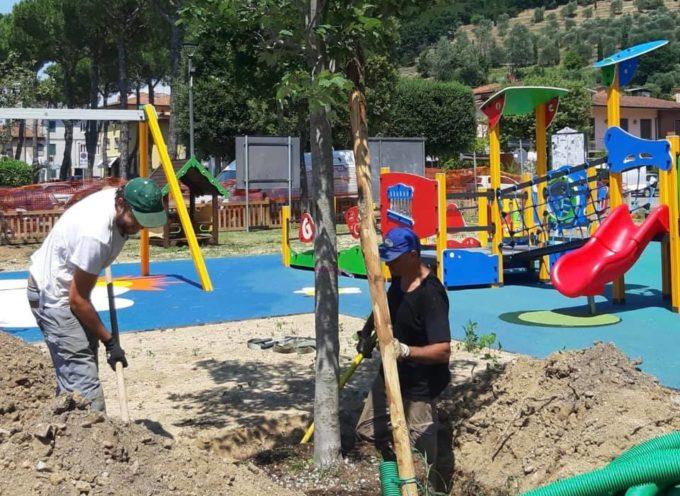 PORCARI – Procedono i lavori per il nuovo parco giochi inclusivo e sicuro in piazza Felice Orsi.