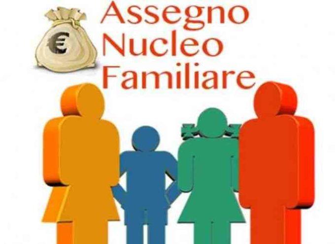 Assegni nucleo familiare: vanno indicati i redditi del figlio maggiorenne