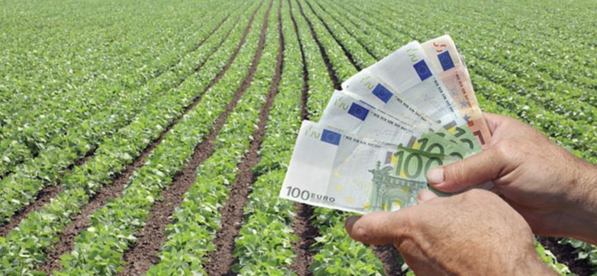via alle domande per contributi a fondo perduto alle aziende agricole