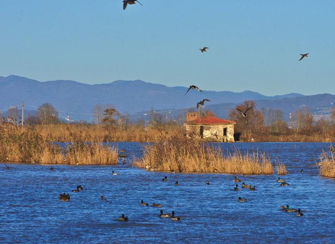 """Al via l'iniziativa """"Vivi Capannori"""" per riscoprire la bellezza del territorio"""