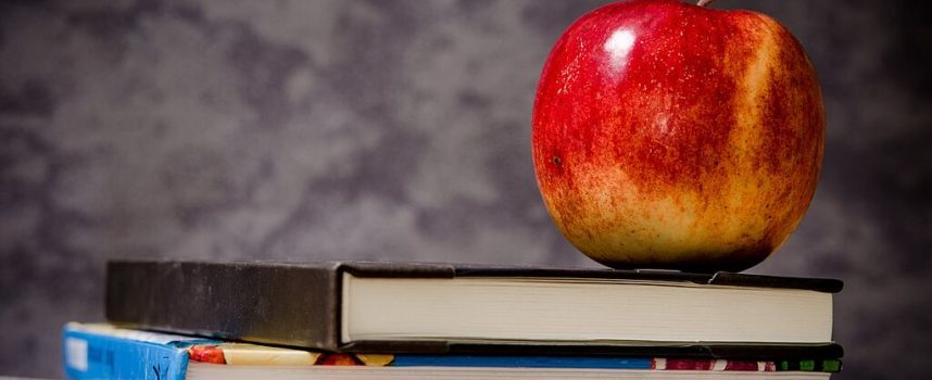 CAPANNORI – Mensa e trasporto scolastico: iscrizioni prorogate al 15 giugno