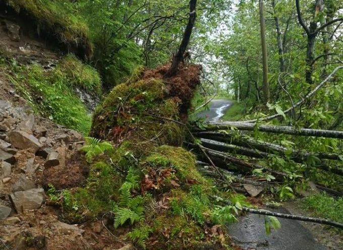 Valle del Serchio: è stata una vera e propria bomba d'acqua
