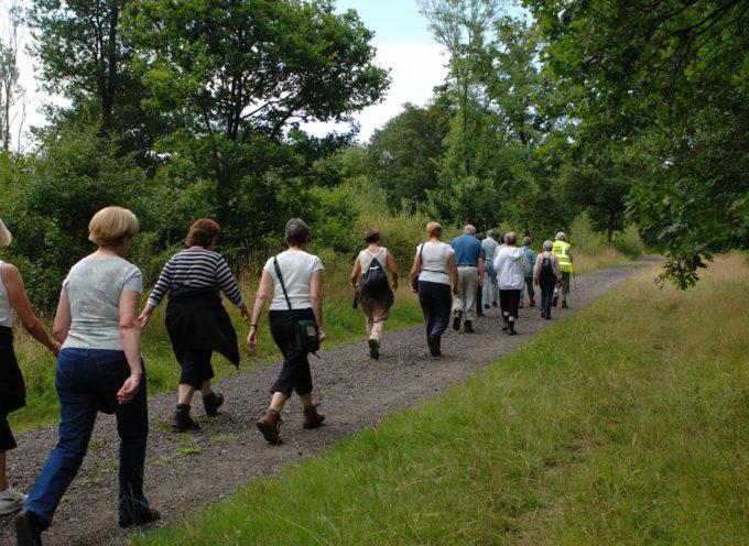 Attività fisica adattata (AFA): via libera alla riapertura dei corsi all'aperto