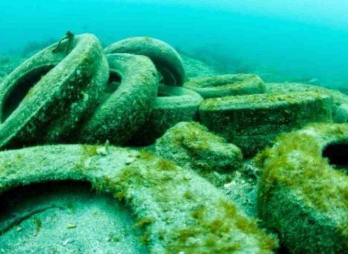 I ricercatori rilevano una quantità enorme di microparticelle di pneumatici in mari e fiumi (e i pesci le stanno mangiando)