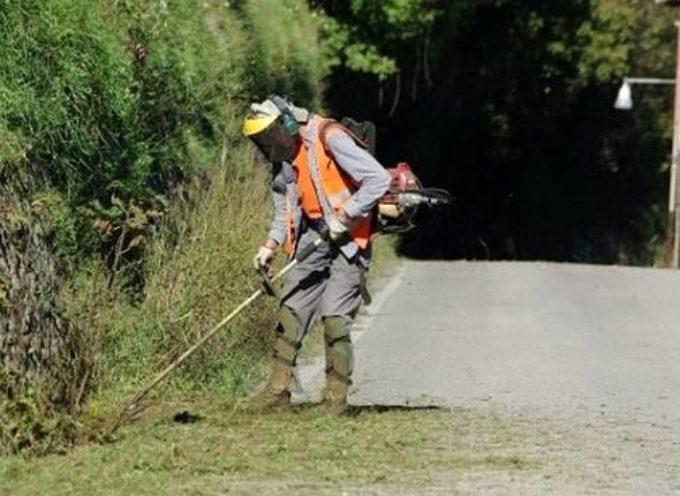 MASSAROSA – Sfalcio dell'erba, al via gli interventi su tutto il territorio