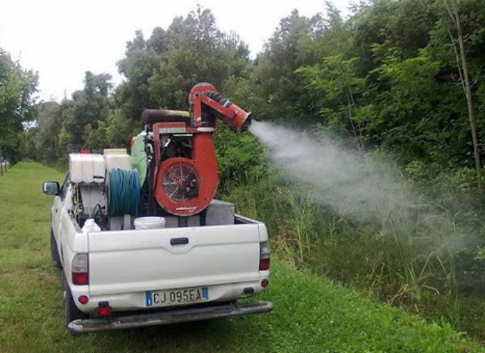 MASSAROSA – Ambiente, al via gli speciali trattamenti contro le zanzare