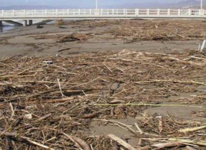 """Il """"lavarone"""": sono fiumi in piena di questi giorni che hanno potato ingenti quantità di materiale sulle spiagge"""