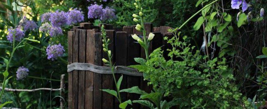 Azzurro e violetto nel giardino…