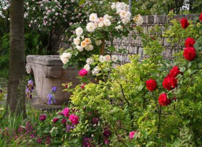 I giardini di campagna.