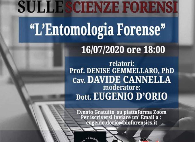 Webinar series sulle #scienzeforensi offerto da Bio Forensics & Agenzia Investigativa FALCO : Investigazioni & Perizie.