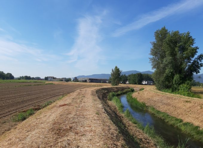 A Capannori, i nostri operai hanno eseguito il taglio della vegetazione sulle sponde del Rio Casale