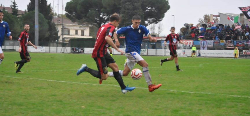 La Lucchese 1905 annuncia con soddisfazione il prolungamento del rapporto professionale con i giocatori Giovanni Nannelli (classe '00), Filippo Fazzi (classe '00) e Federico Papini (classe '99).