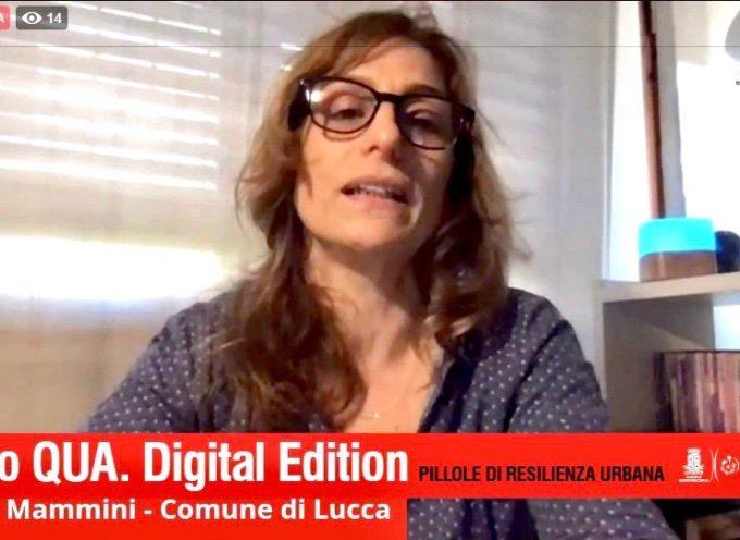 Educazione, cultura e verde: ecco le priorità emerse dalquestionario Lucca, come va?