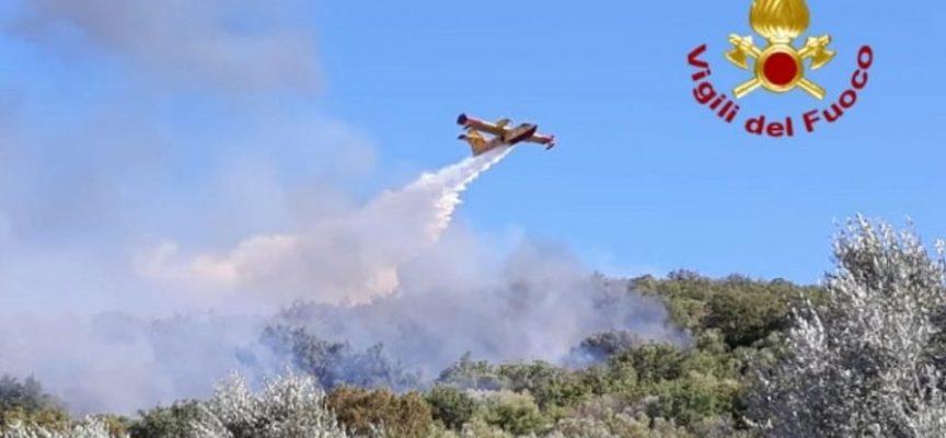In fase di bonifica l'incendio a La Parrina, a Orbetello. Bruciati 12 ettari di macchia mediterranea
