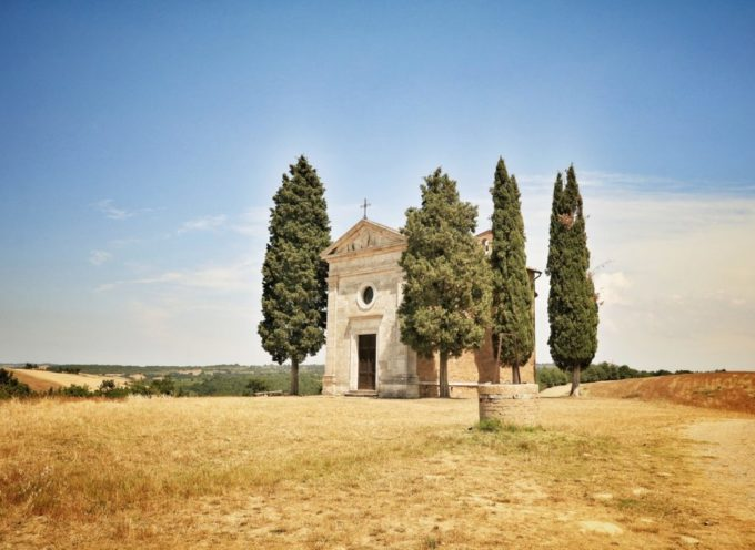 Cipressi in Toscana: simboli indiscussi della nostra Regione e di altri Paesi!