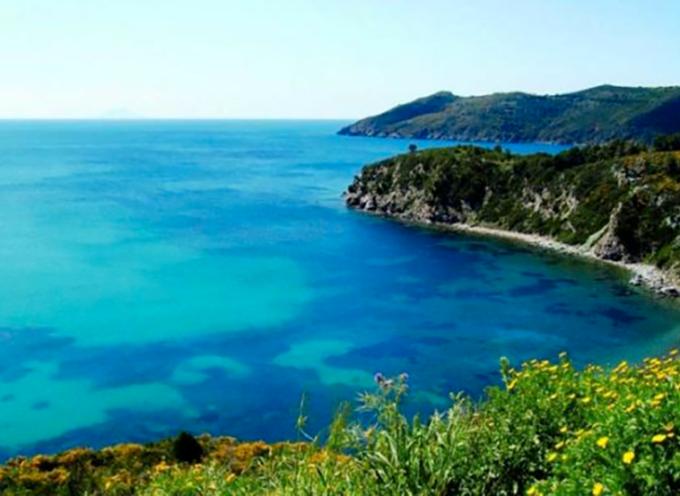 """Turismo residenziale, boom di prenotazioni sulla costa toscana: """"Estate da tutto esaurito"""""""