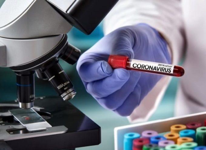 Test sierologici, le novità per i privati