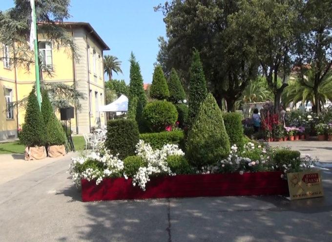 Evergreen Forte: un weekend per gli appassionati di giardinaggio e arte