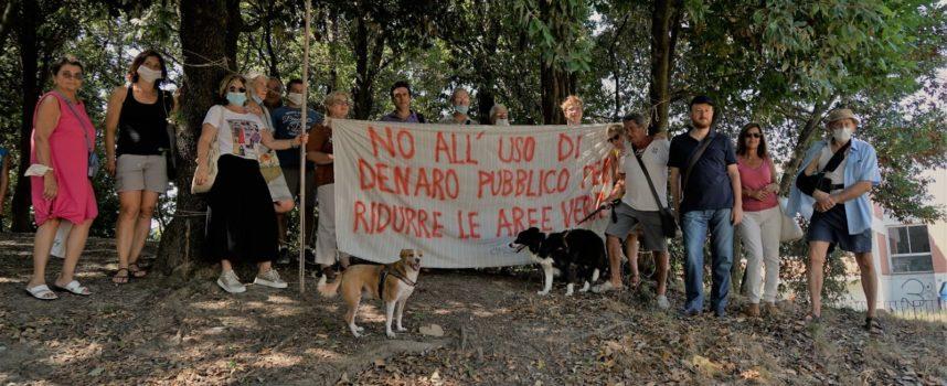 """S.Concordio: con la """"galleria coperta"""" tra P.e Moro e via Savonarola previsto l'abbattimento di decine di alberi di alto fusto nell'area verde della Montagnola"""