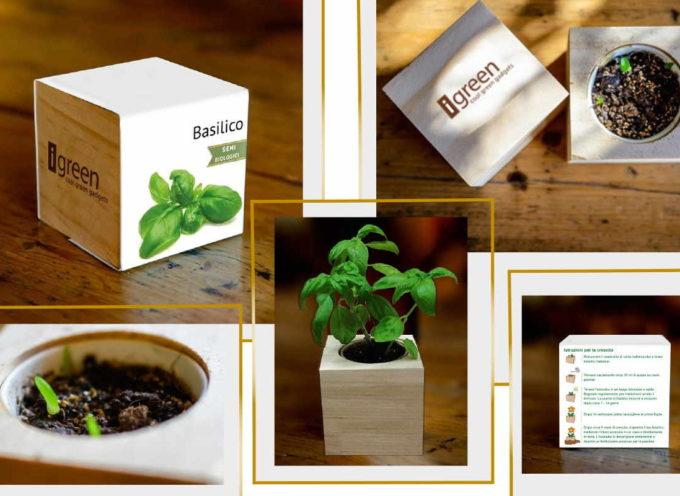 iGreen e le Piante in Cubi di Legno, per diffondere l'amore per la natura