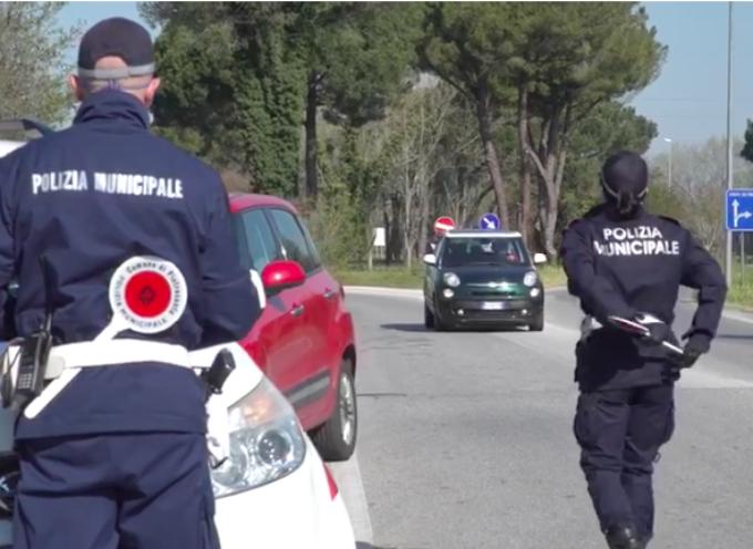 PIETRASANTA – ancora troppi automobilisti guidano senza cintura e al cellulare, sono quasi 500