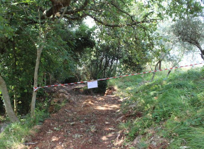 stavano costruendo abusivamente una strada sulle colline tra Capriglia e Capezzano,