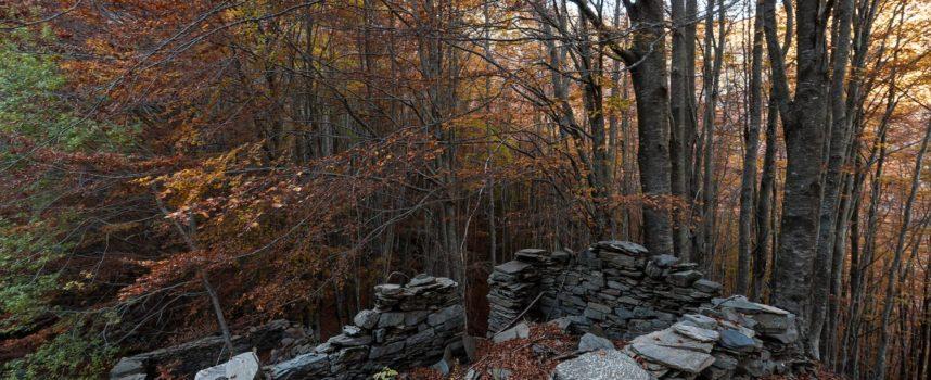 Il bosco del Fatonero: l'origine di tutte le leggende della Garfagnana