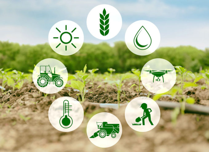 Cia: il governo non dimentichi l'agricoltura nel superbonus Hi-Tech