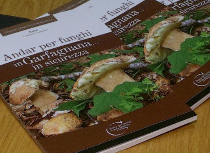 Andar per funghi in Garfagnana…ma in sicurezza