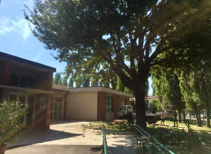 Lunedì (14 settembre) tutte le scuole di Porcari riapriranno in sicurezza.