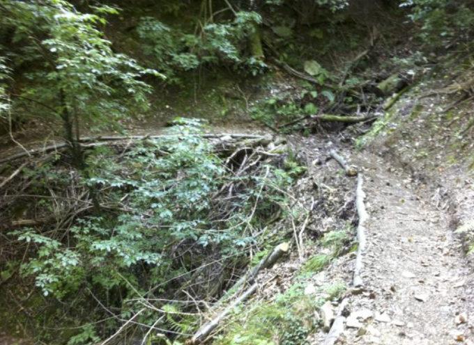 Valle del Serra: al via cinque interventi di ripristino funzionale e valorizzazione