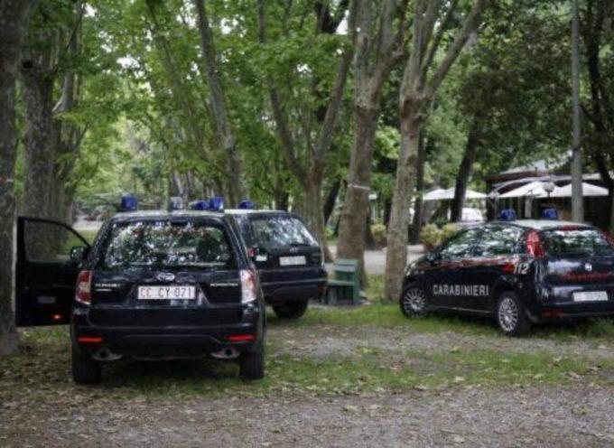 Blitz antidroga dei Carabinieri in pineta a Viareggio, arrestato pusher