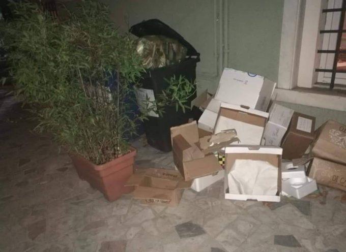 Verde Azzurro Notizie risponde all'Assessore all'Ambiente del Comune di Seravezza