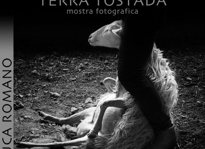 """""""Terra Tostada"""" (dura) di Luca Romano nella Sala delle Grasce"""