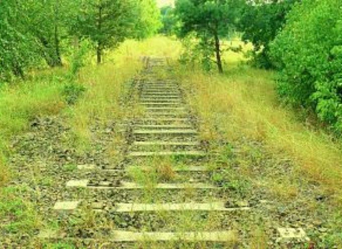 Firmato protocollo d'intesa sul progetto di riconversione del tracciato della ex ferrovia Lucca-Pontedera in Greenway