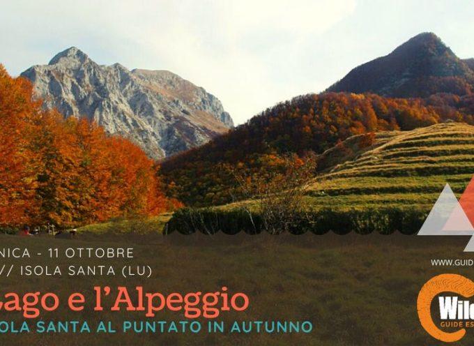 Il Lago di Isola Santa, i ruderi di Col di Favilla e l'alpeggio del Puntato!