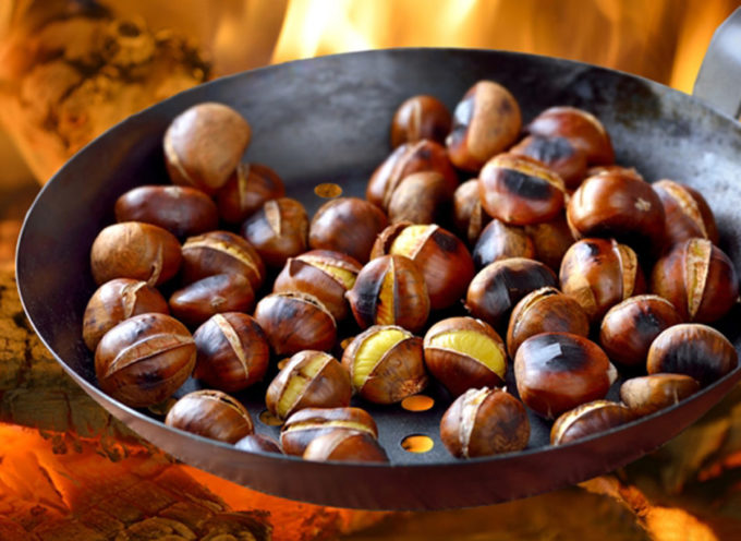 Differenza tra Castagne e Marroni: 7 regole d'oro per distinguerle.