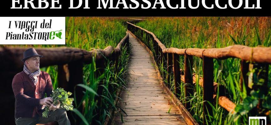 MARCO PARDINI – SULLE RIVE DEL LAGO DI MASSACIUCCOLI