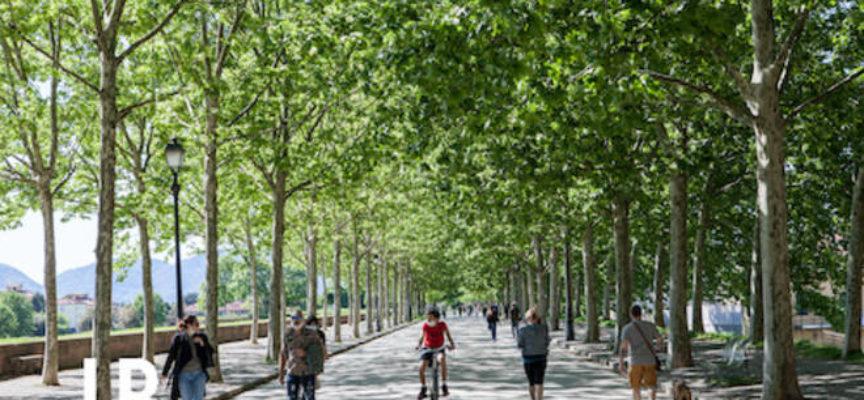 Verso il Mastrplan del verde urbano: presentato lo studio preliminare