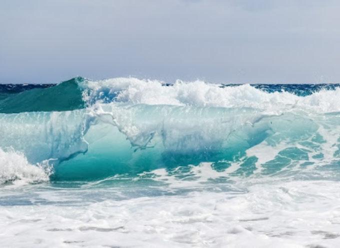 Il monitoraggio del mare in Toscana nel 2019