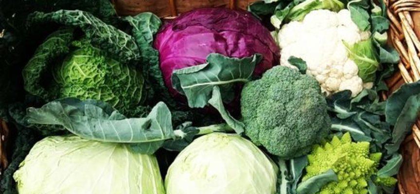 Le verdure del freddo…