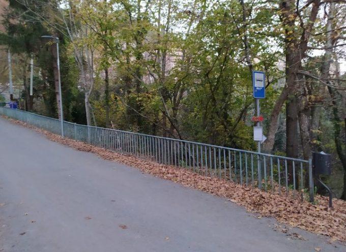 PESCAGLIA -SI RICHIEDE AL COMUNE  UNA PENSILINA ALLA FERMATA DEL BUS