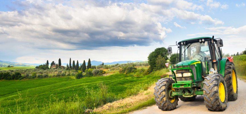 """Crisi, Neri (Confagricoltura) """"Bene impegno Regione, ma serve fare di più per imprese agricole"""""""
