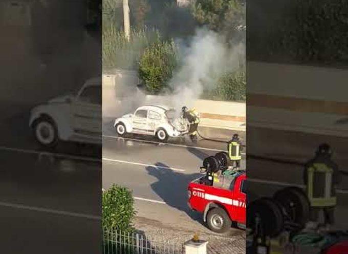 Auto va a fuoco venerdì mattina sulla via Romana a Tassignano