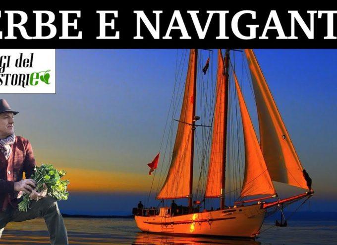 Erbe e naviganti DI MARCO PARDINI