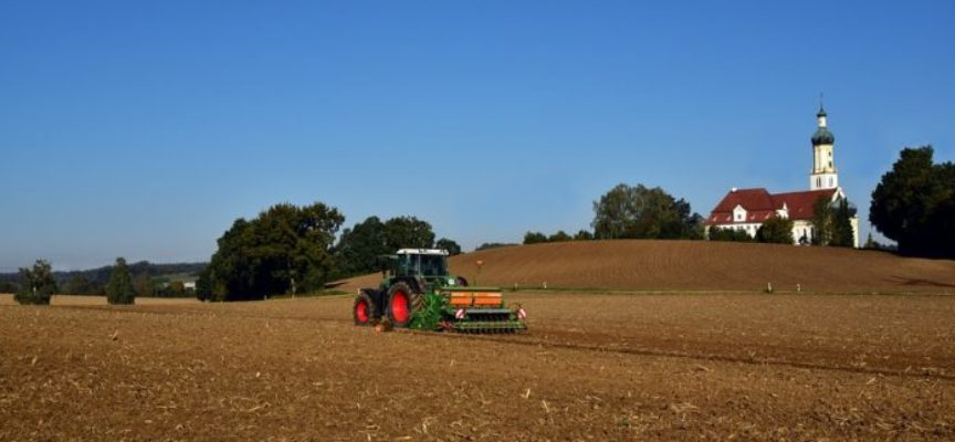 Decreto Rilancio. Esonero contributivo per le aziende agricole
