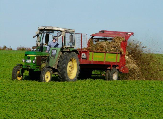 """Saccardi: """"Dall'Europa 312 milioni di risorse per l'agricoltura toscana negli anni 2021-22"""""""
