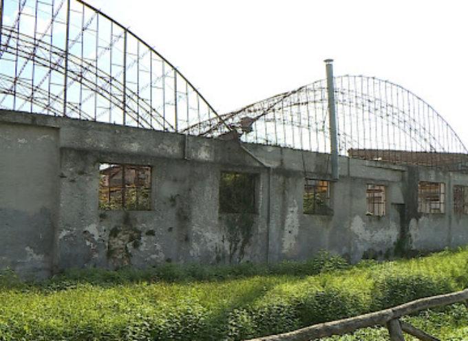 un palacongressi da 1500 posti nell'ex area della Cooperativa Pietrasanta